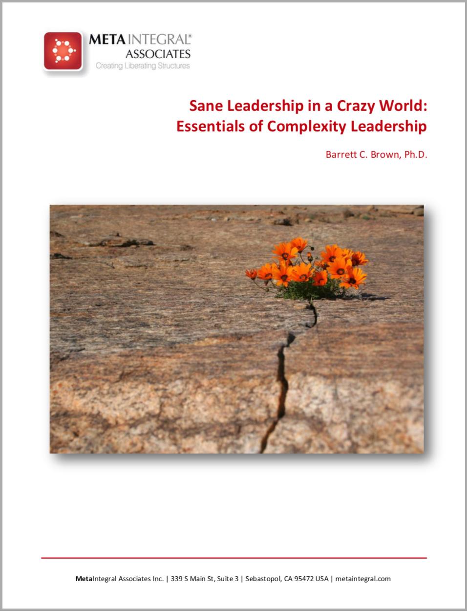 article-sane-leadership.jpg