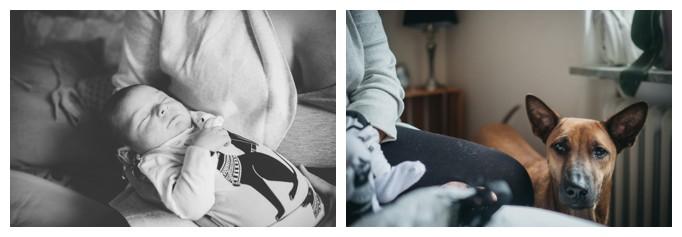 familjefotograf_stockholm_familjefotografering_lindarehlin_cecilia pihl_barnfotograf_bagarmossen_vallentuna