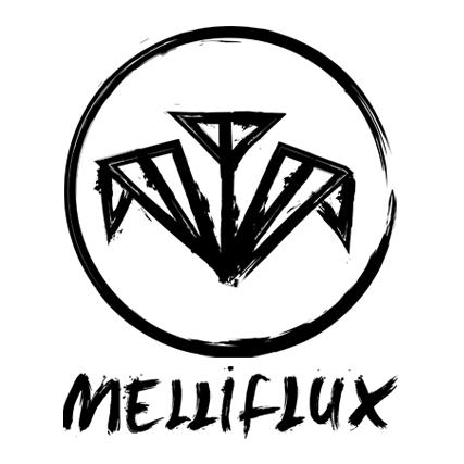 Visual Identity for DJ/ Producer Melliflux