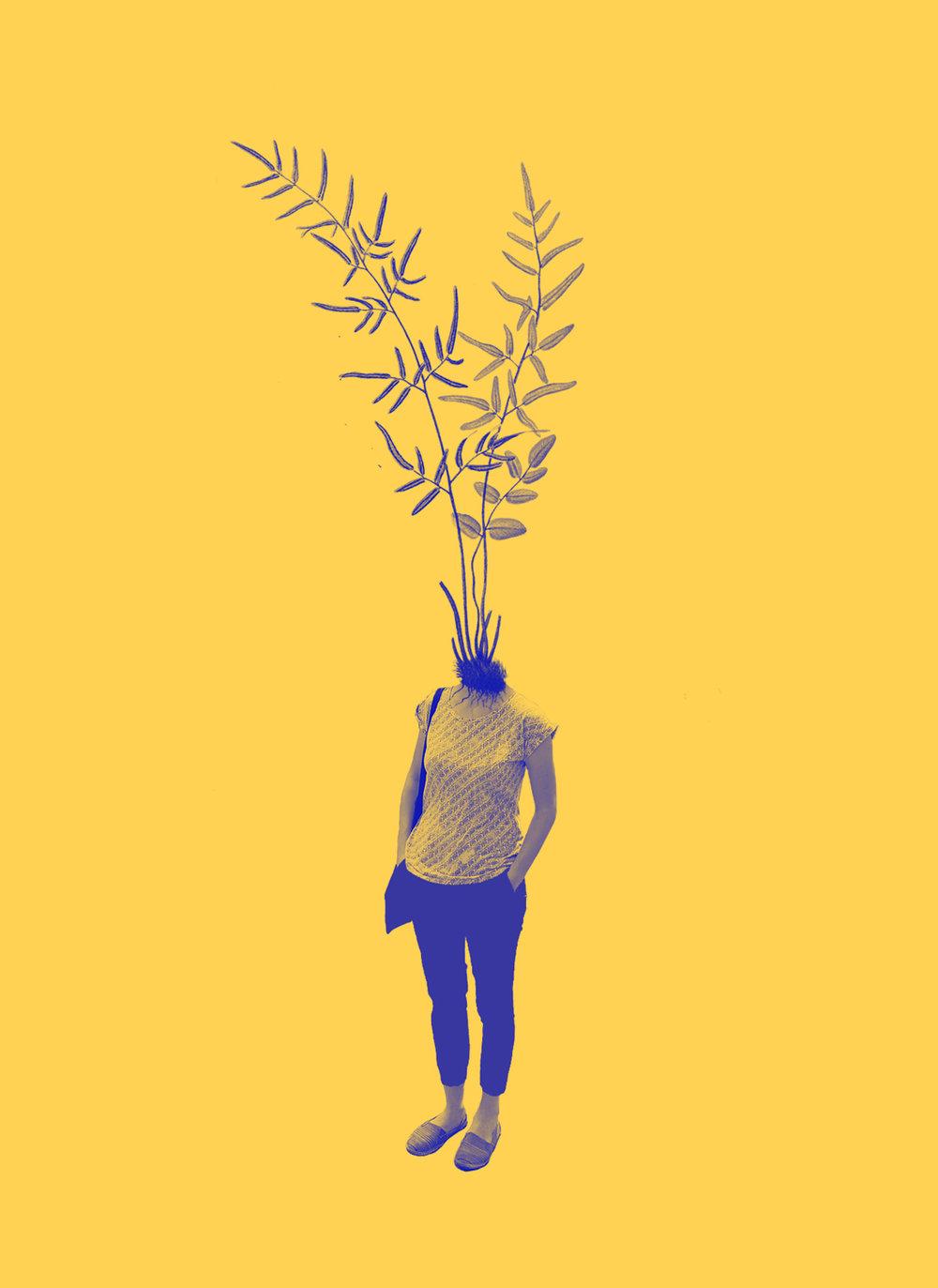 headplant.jpg