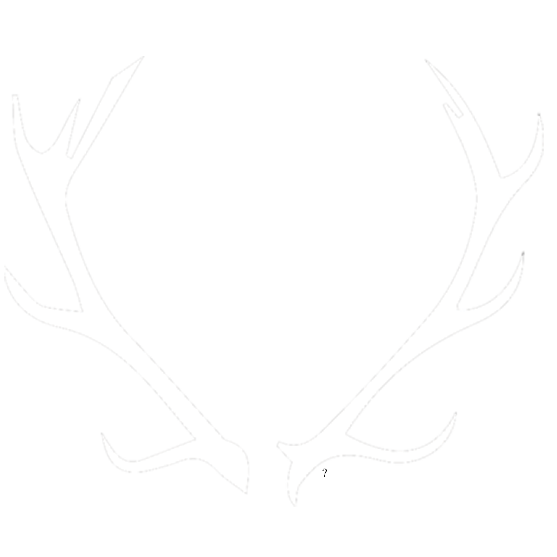 Benjamen Janey - The Renaissance
