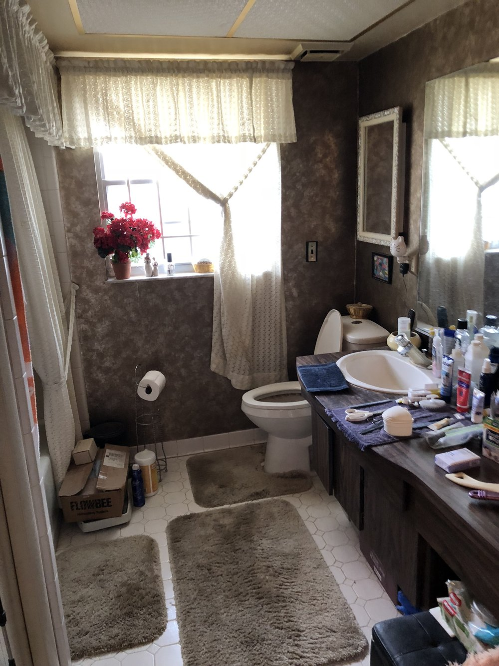 One Room Challenge Guest Bathroom Before