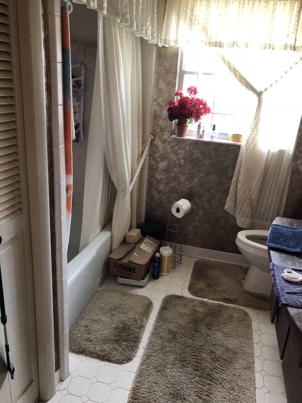 ORC Guest Bathroom Before