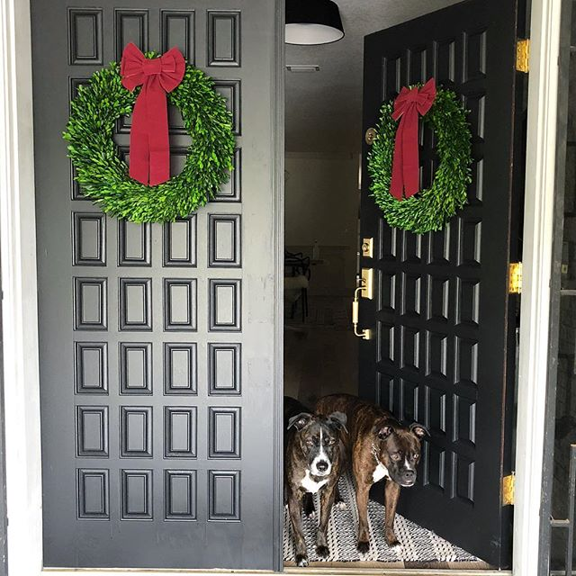 This is about as festive as our exterior is getting this year, but we're okay with it! Super pumped about these #boxwoodwreath that I scored from @target 🎄🎀 #studiogaspo #70spartypad #christmasdecor #exteriordesign #blackdoor #dogsofinstagram #smmakelifebeautiful #cljsquad #abmathome #houzz #hgtv #orlandointeriordesign #orlando #holidaydecor