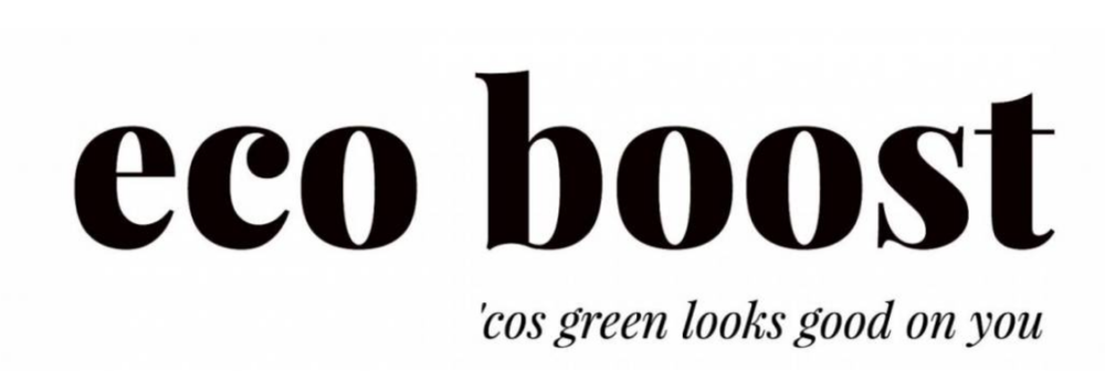Eco Boost logo
