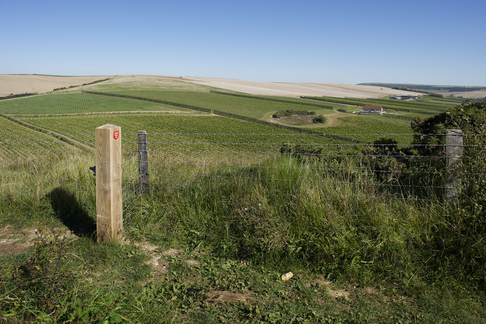 fields over barns.jpg