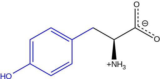 L-Tyrosine at physiological pH