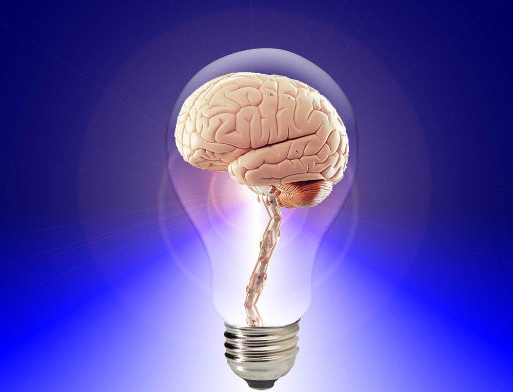 brain-20424_1280.jpg
