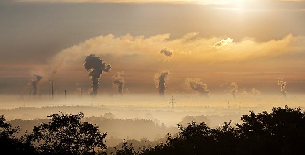 mercury environment pollution
