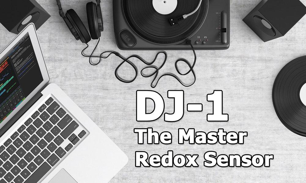 DJ-1 master redox