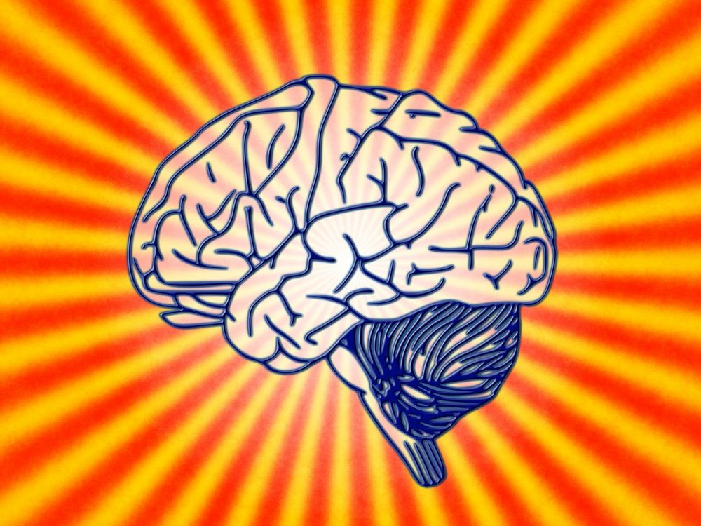 brain strong.jpg