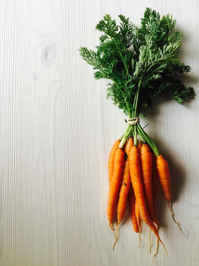 fresh_carrots.jpg