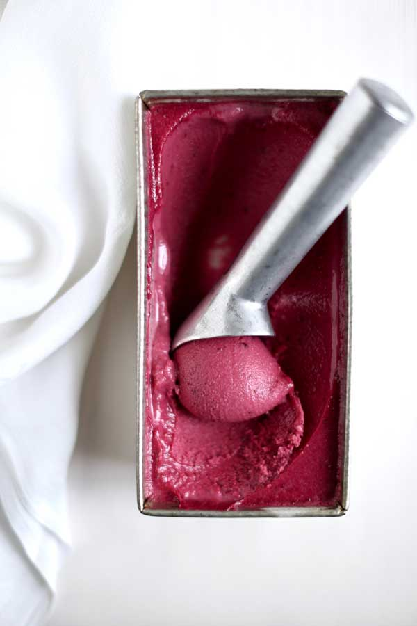 elderberry frozen yogurt