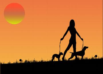 woman walking dogs on leash orange.png