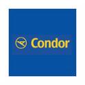 Condor_LucaNet.png