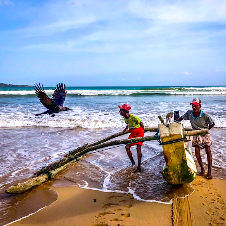 bird.fishermen.png