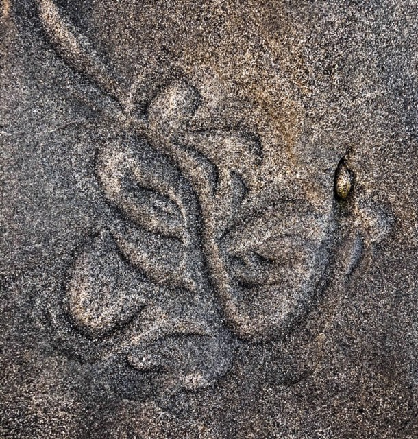 Self-portrait of Ganesha