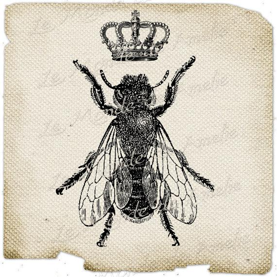When was the last time you saw a fly with a crown?