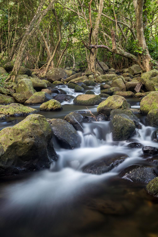 Hidden Streams at Ke'e, Kauai