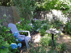a lovely place to enjoy the garden