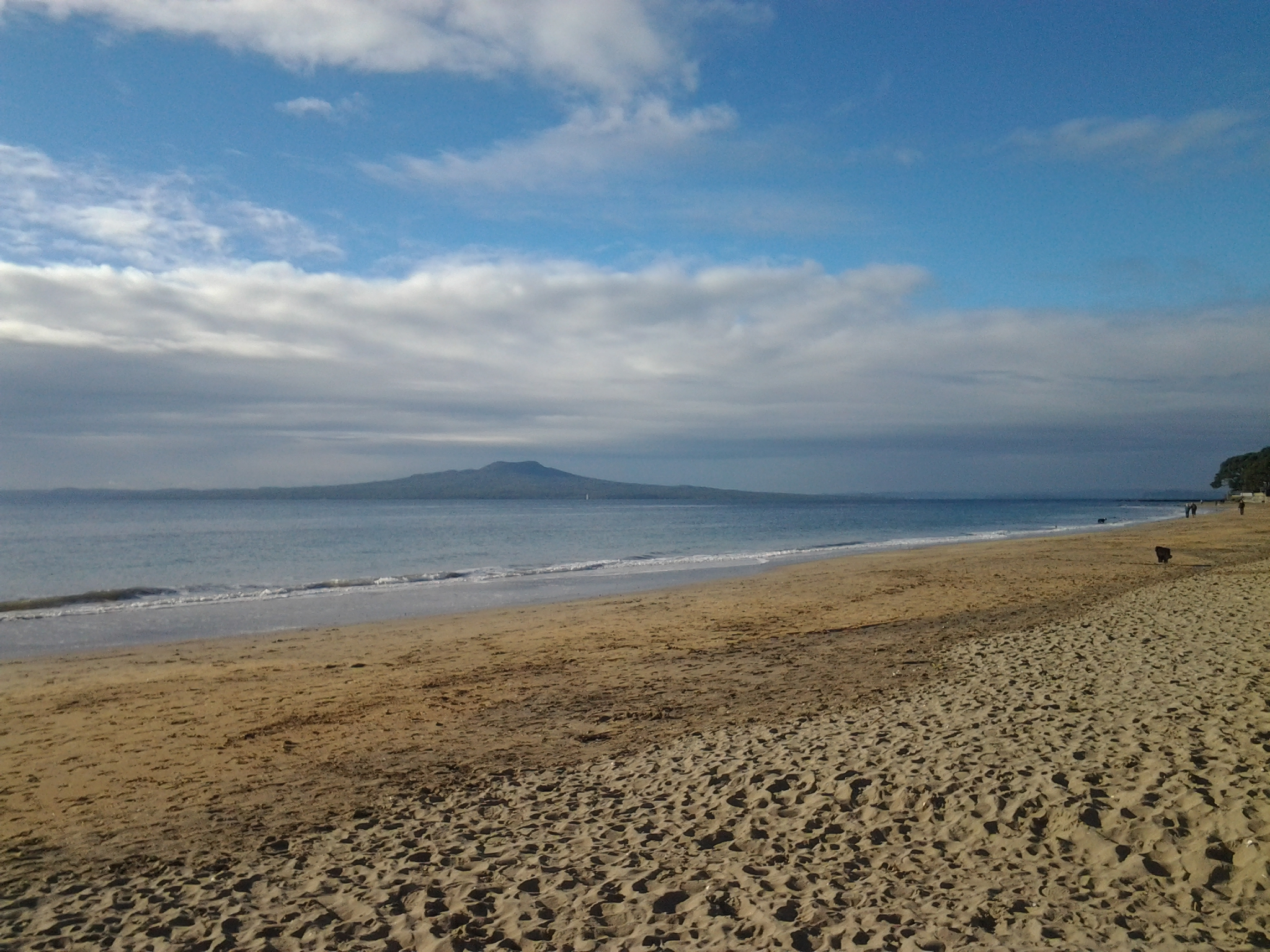 an autumn view on our morning walk, Takapuna Beach