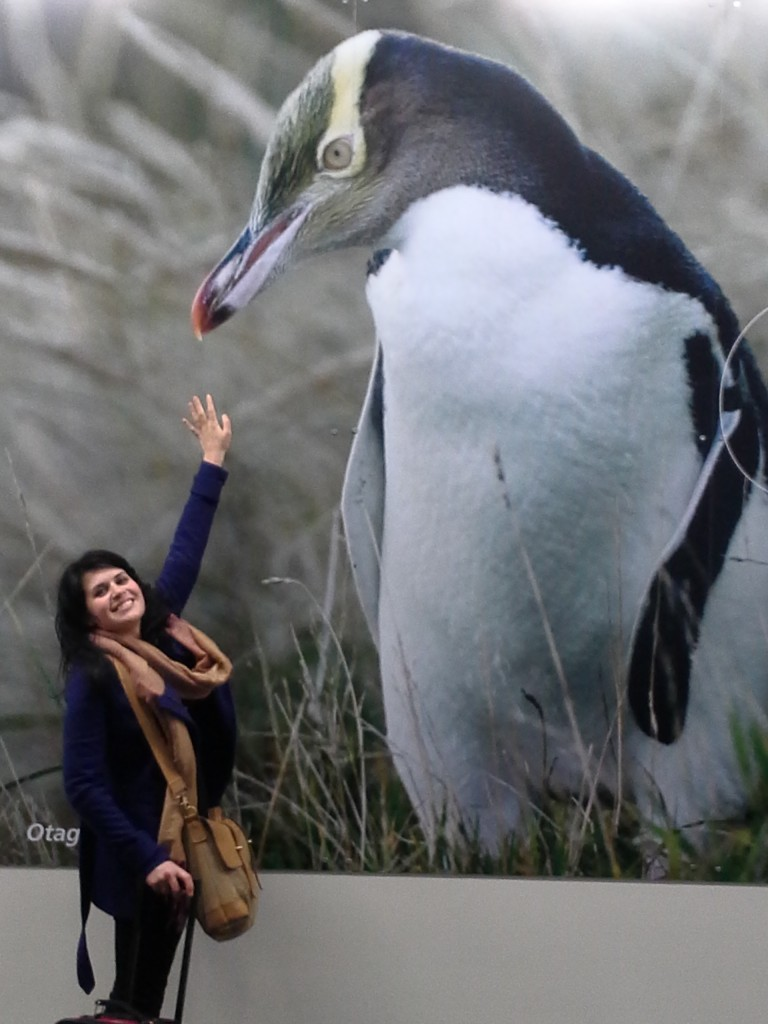 Bridget feeds penguin in Christchurch