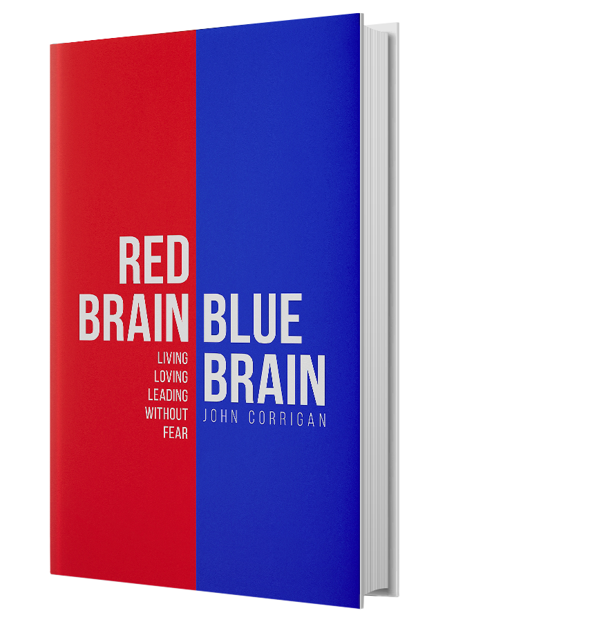 book-red-brain-blue-brain.png