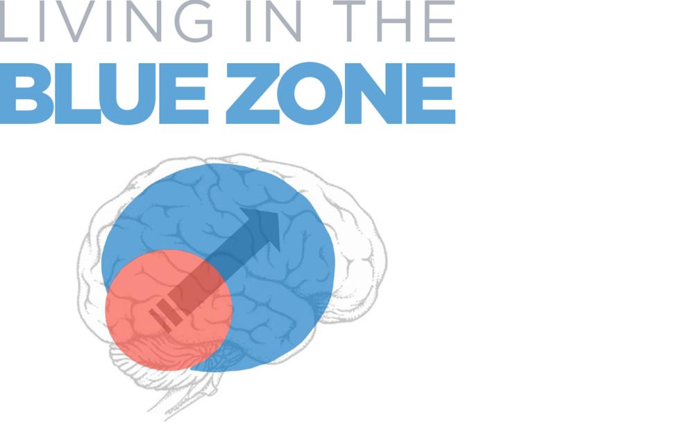 workshop - blue zone title.png