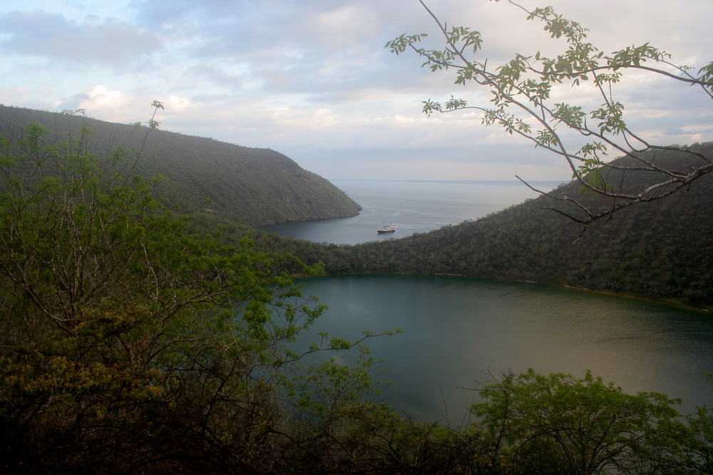 Darwin Lake015.JPG