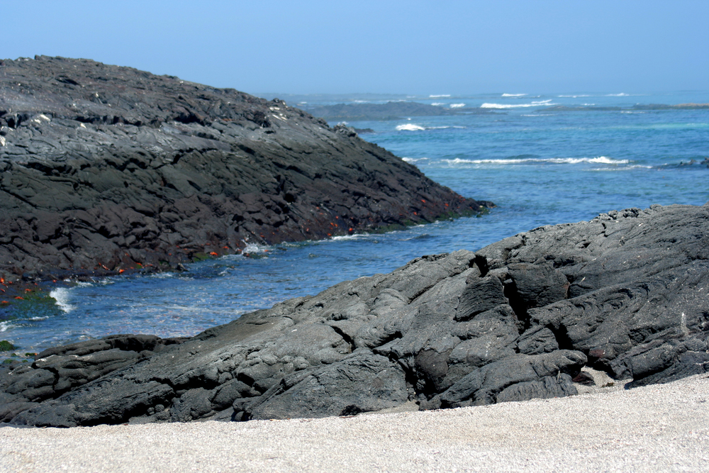 Punta Espinosa152.JPG