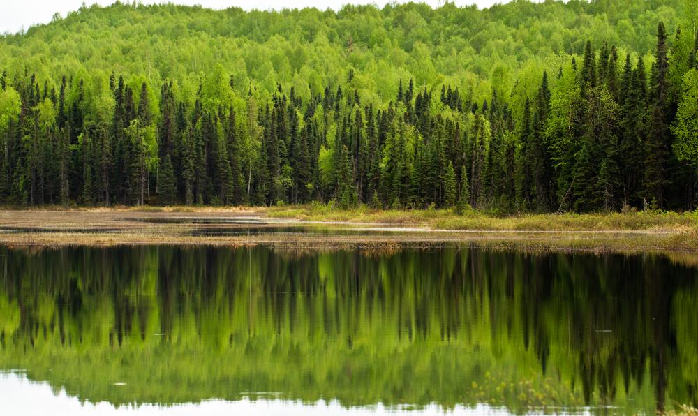 Lake Helen IMG_2870.jpg