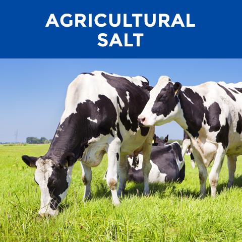 AgriSalt-480x480-120.png