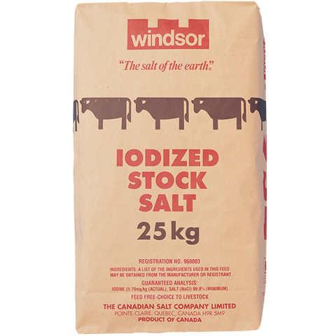 0954-Iodized 25kg-480x480-120.png