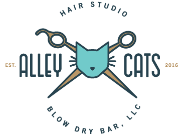 Alley Cats Hair Studio & Blow Dry Bar, LLC