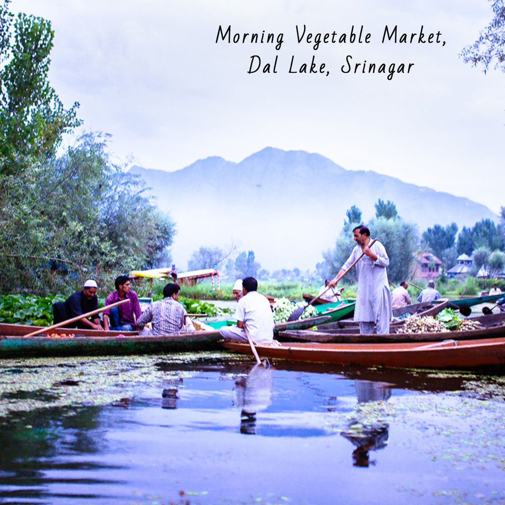 journal-dallake.jpg