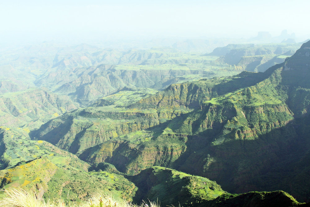 SIMIEN MOUNTAINS - One of the most spectacular landscapes in the world with jagged peaks and deep valleys, boasting extremely rare animals such as Walia ibex.