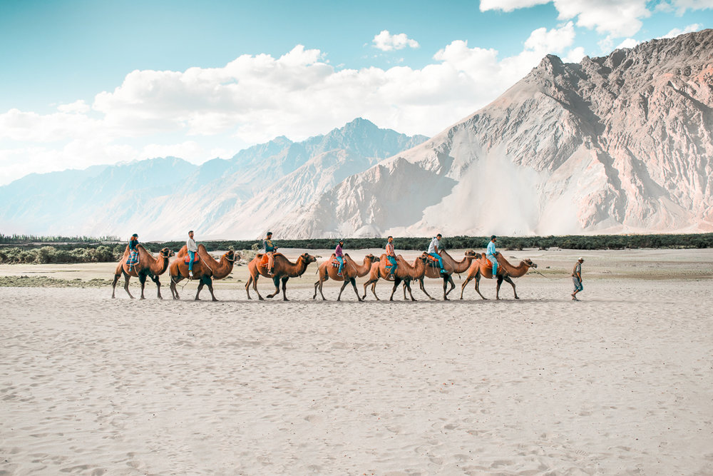 NUBRA - A high-altitude cold desert surrounded by glaciers, Nubra's uniquely moon-like landscape was once a heavily transited point on the Ancient Silk Road.
