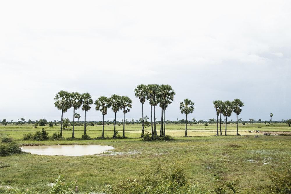 cambodia-0147.jpg