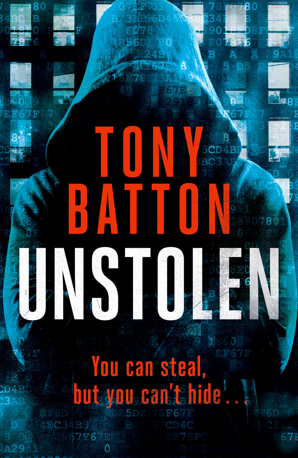 Bott_Unstolen_Ebook cover.jpg