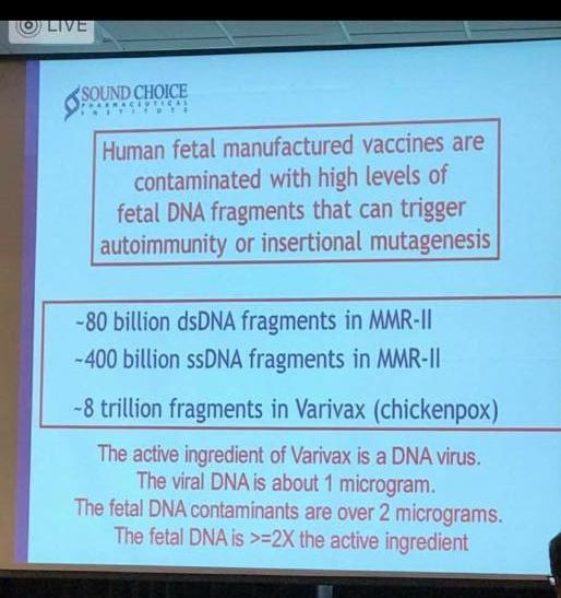 Human Fetal Vaccines Image.jpg