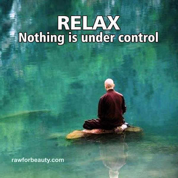 RELAX - nothing is under control.jpg