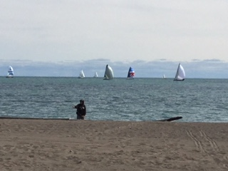 sailboats on a Saturday.jpeg