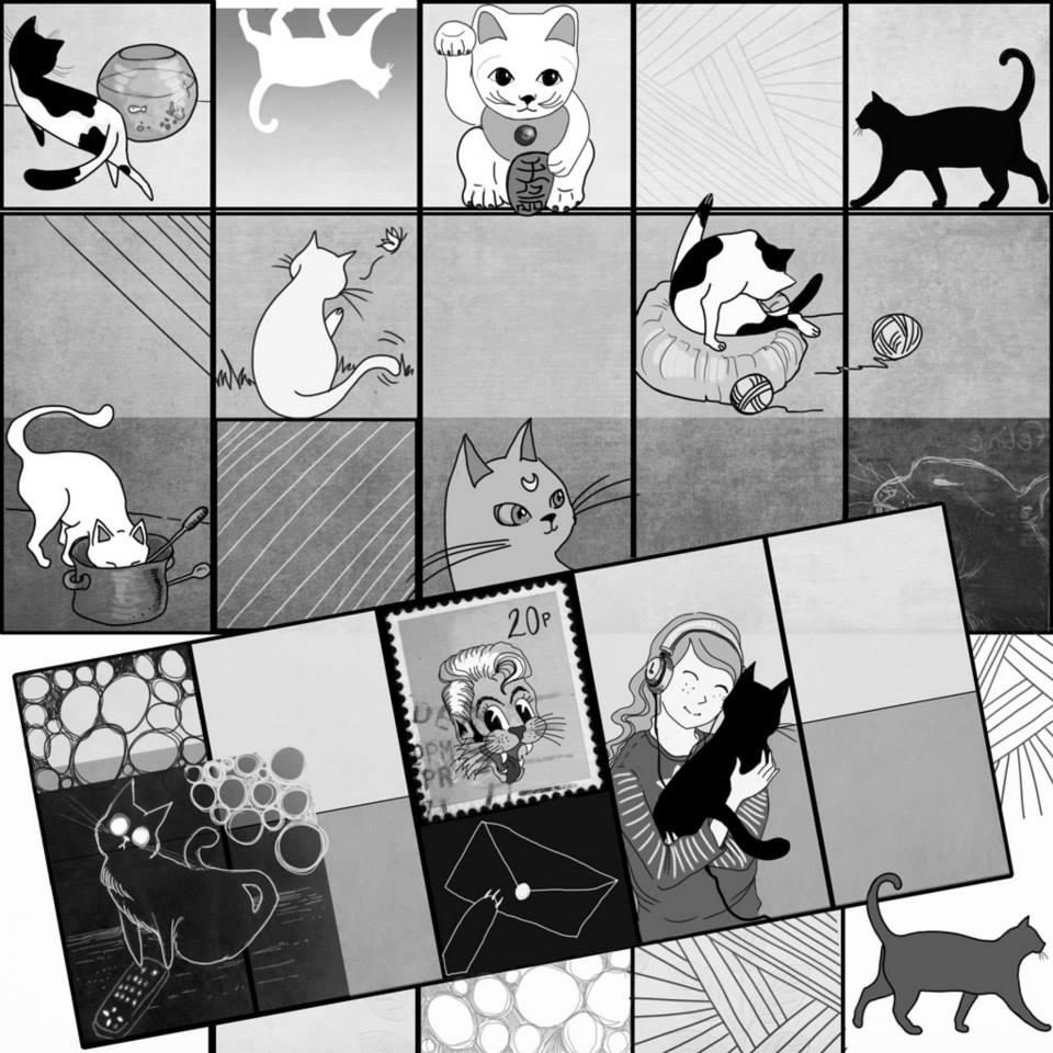 cats kittens.jpg