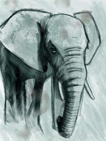 elephant2SMALL.jpg