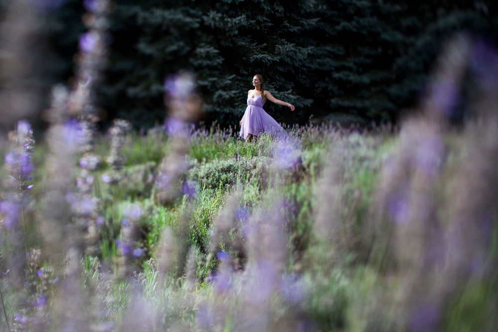 DallasCurow_Lavender.jpg
