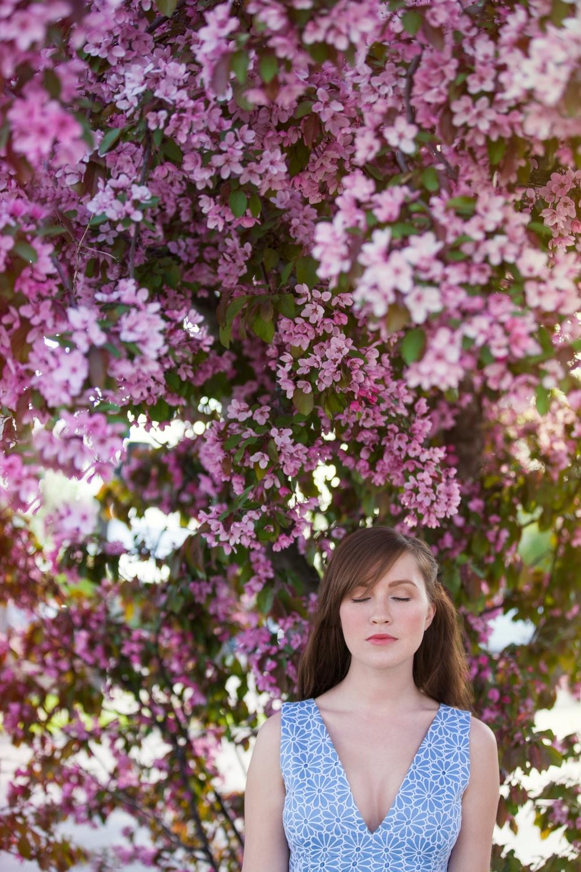DallasCurow_SpringBlossoms.jpg
