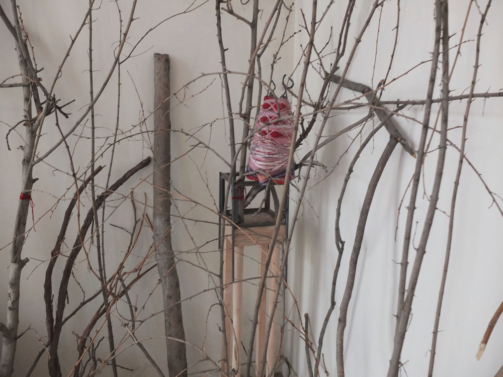 """Medusa, 2015, Yarn, wool, recycled packaging, branches,  64""""x94""""x15"""""""