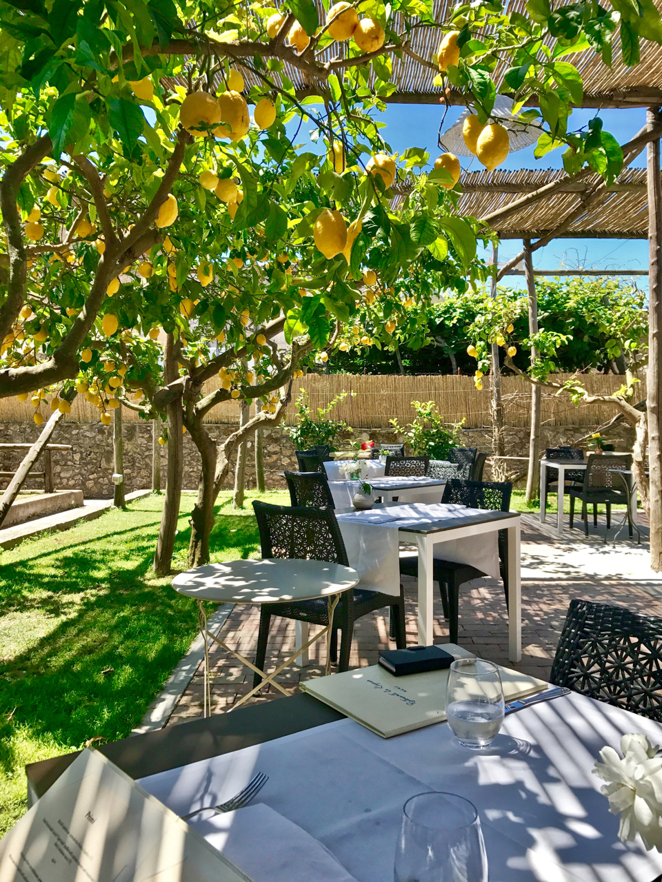 Dining Under a Lemon Grove in Anacapri on the island of Capri