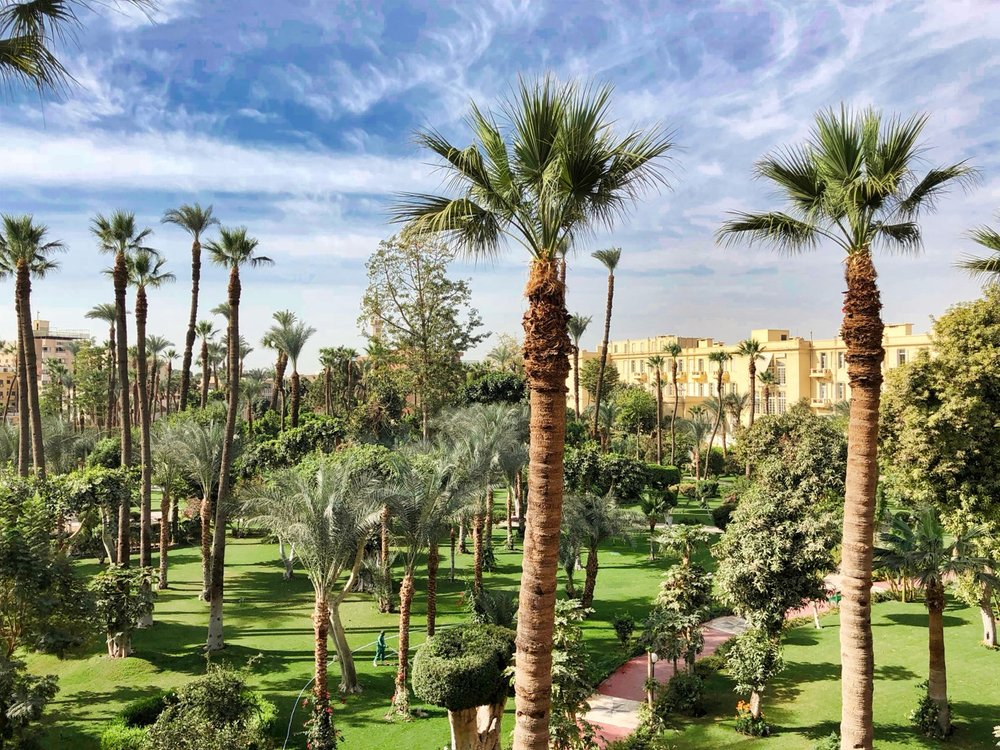 The Royal Garden at the Pavillon Winter Luxor Hotel