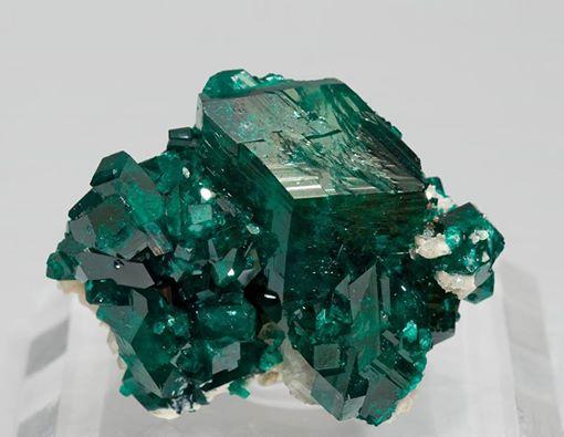seattle mineral market